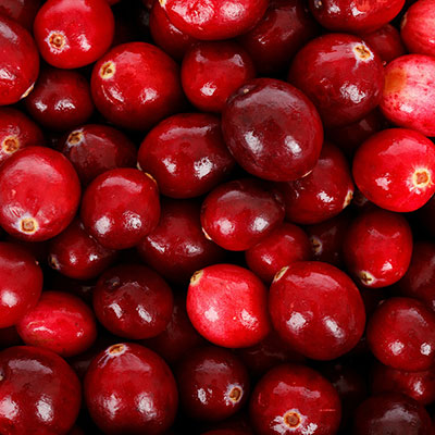 Biocontrol and Integrated Crop Management products for your cranberry crop
